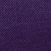 Röntgenschürze - Farbe Purple