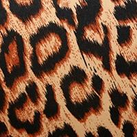 Röntgenschürze - Farbe Jaguar